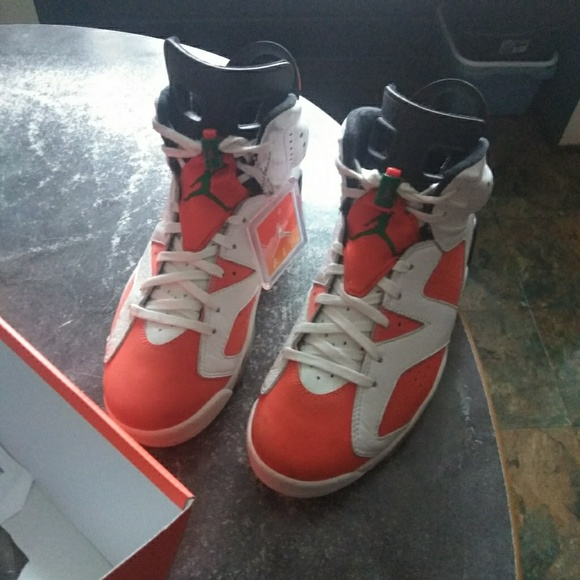 f89f94e59208d0 Jordan Other - Jordan Gatorade 6s size 9.5 men
